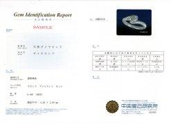 画像1: CGL鑑別書の作成